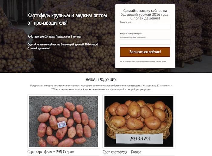 Минимум информации на лендинге компании, продающей картофель