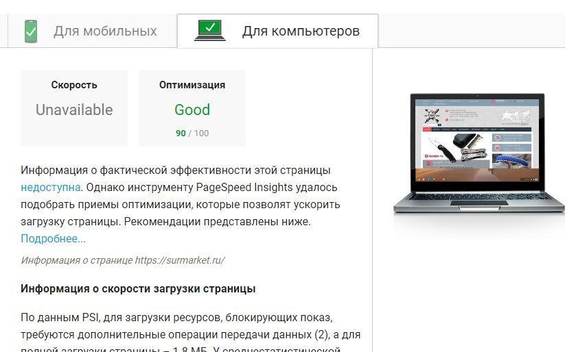 Google Page Speed оценивает сайт, построенный на cms интернет-магазина CS-Cart