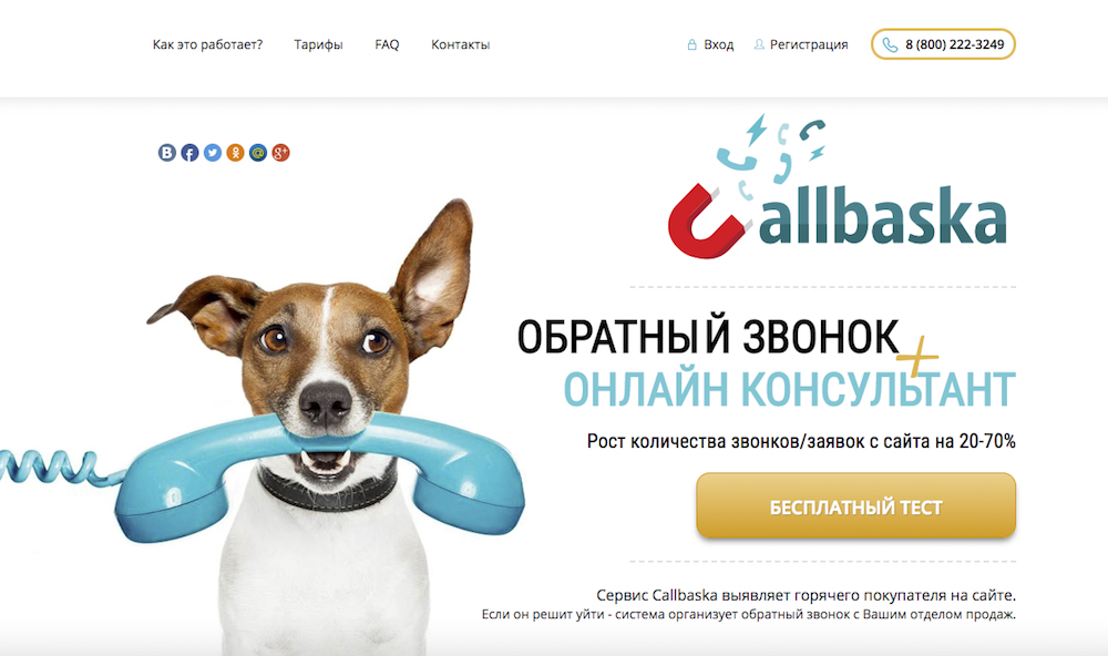 Callbaska