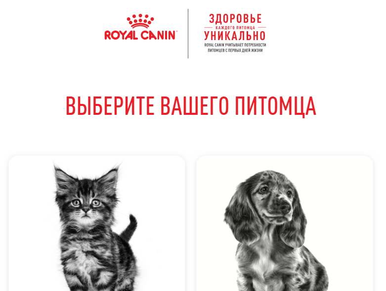 Royal Canin, E-recruitment