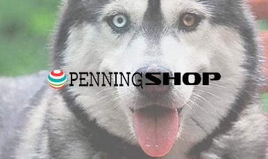 Интернет-магазин медальонов для домашних животных на платформе CS-Cart