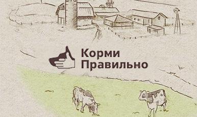 Интернет-магазин корма для собак на движке CS-Cart