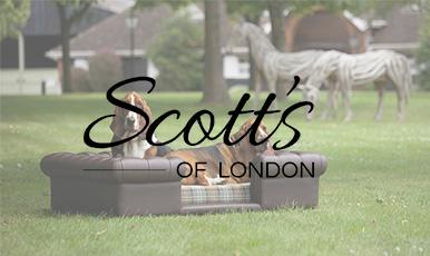 Интернет-магазин диванов для собак на движке CS-Cart